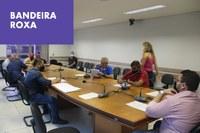 Mesa suspende homenagens por pandemia e reavalia posses