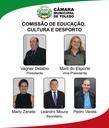 Comissão de Educação, Cultura e Desporto-01.png