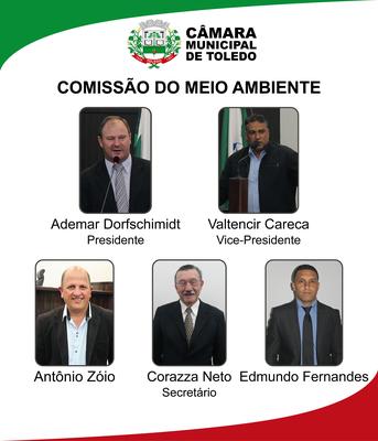 Comissão do Meio Ambiente-01.png